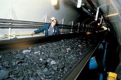 Конвейер для подачи угля от 74000 руб.
