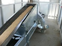 Ленточный конвейер зерна