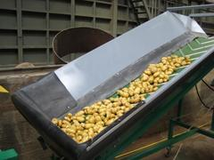 Конвейер для овощей - Спроектируем, изготовим за 10 дней.
