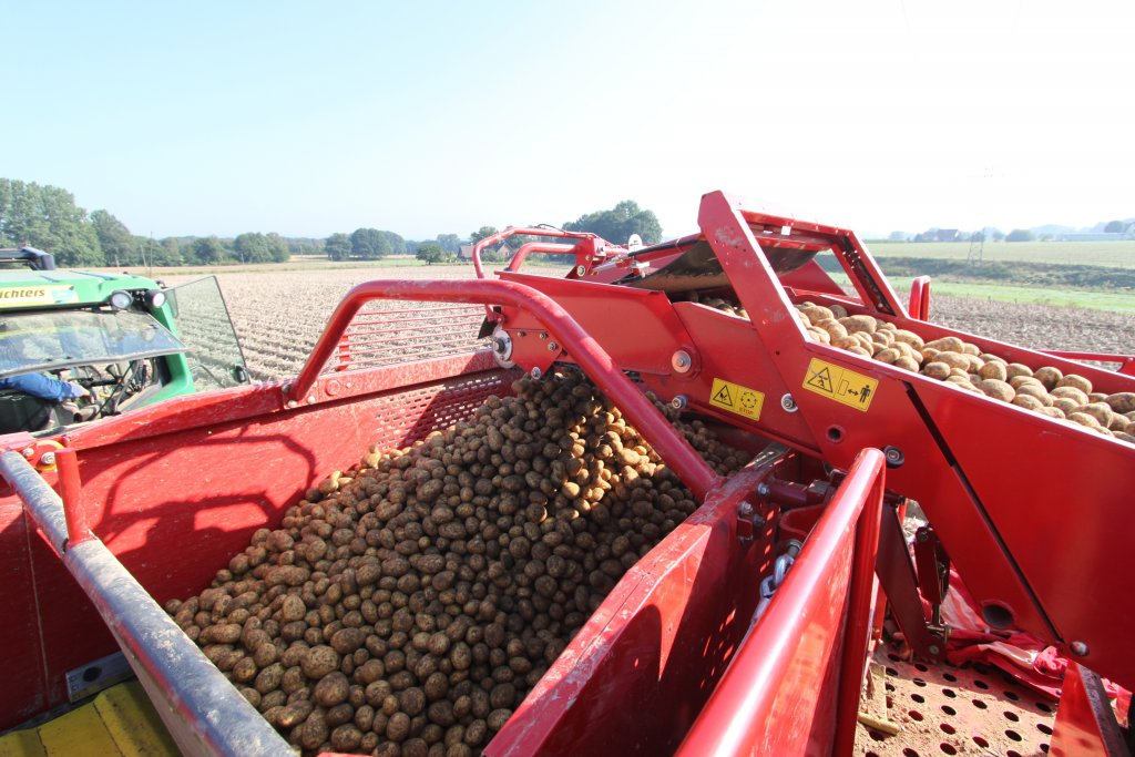 Транспортеры к картофелекопалке метка транспортер